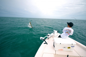Landon Forde (9) can FIGHT A TARPON! Fought this arpon for 1 hour 35 minutes - had it to the boat but the hook pulled and we did not get to measure for the Sarasota Tarpon Tournament Youth Division...almost!  Guestimate around 100-110lbs.. Fishing with Capt. Kevin Wessel out of CB's Saltwater Outfitters, Siesta Key.