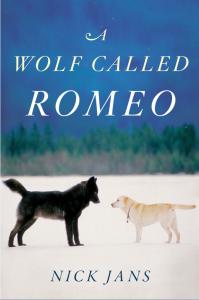 Wolf named Romeo