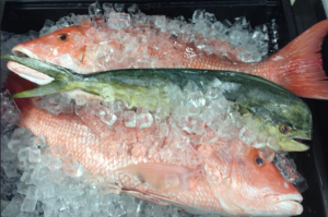 Island Fishmonger