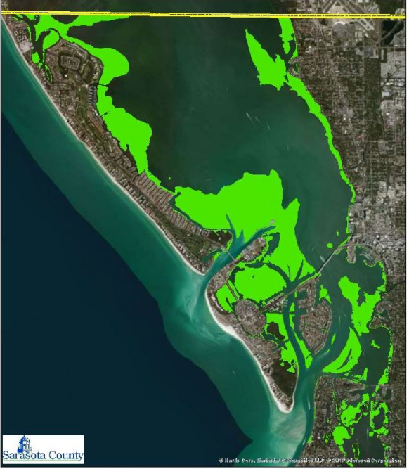 Seagrass impacts anticipated with dredging