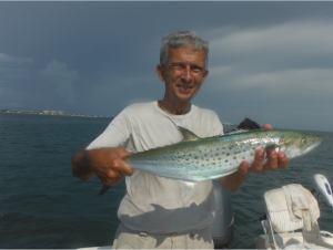 Spanish Mackerel will please Siesta Key anglers in October