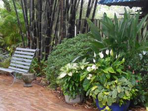 sarasota gardens 2