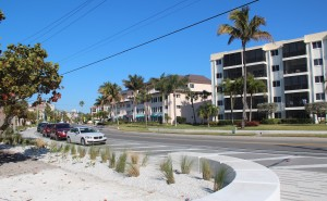 Parking spaces on Beach Road parallel to the Siesta Public Beach Park