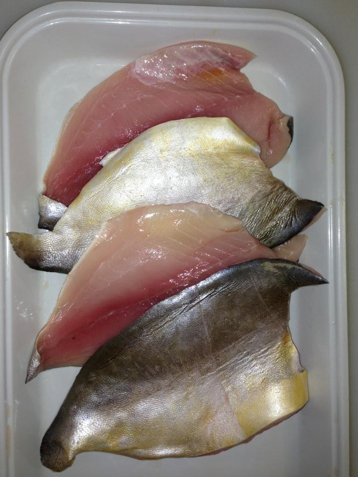 Fresh caught pompano available at big water fish market for Pompano fish recipe