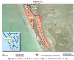 Turtles basin July
