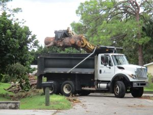 More trucks working on county storm debris collection, with completion of first passes through areas anticipated in 90 days