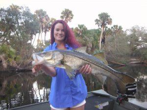 Captain Klopfer's January Fishing Report for Siesta Key
