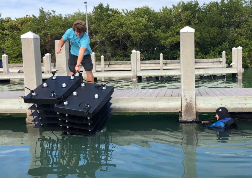 SKA Launches Grand Canal Mini Reef Project
